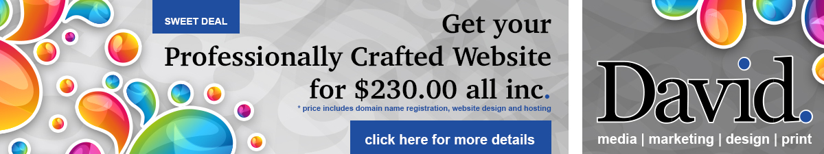 Professionally Crafted Websites for $230.00 per year