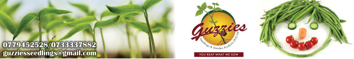 Guzzies Seedlings and Garden Products - You Reap What We Sow