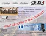 Crush Security: Innovative - Reliable - Affordable