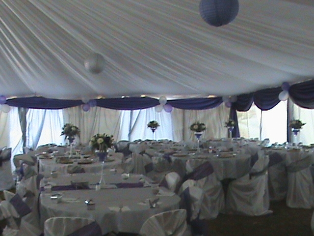 Princelite decor listed on thedirectory zimbabwes business wedding decor junglespirit Gallery